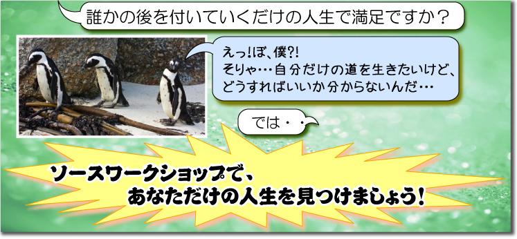 ソース用ヘッダバナー.jpg